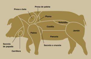 despieces partes del cerdo iberico
