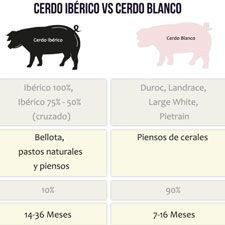 Diferencias entre el Jamón Ibérico y Jamón Serrano