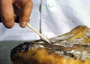 Calando un jamoón de Jabugo